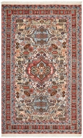 Hand Knotted Persian Ardabil Rug - Multi